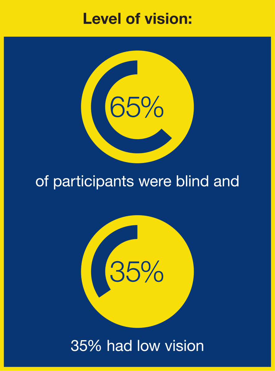 lLEVEL OF VISION GRAPHIC: 65% of participants were blind; 35% had low vision.