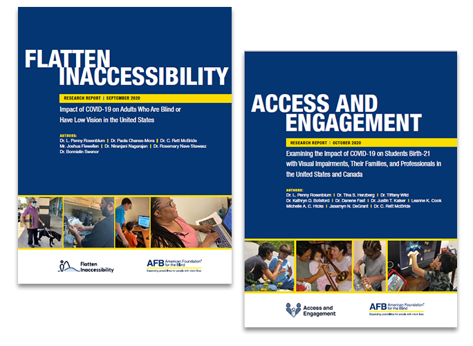 the covers of the Flatten Inaccessibility and Access and Engagement reports