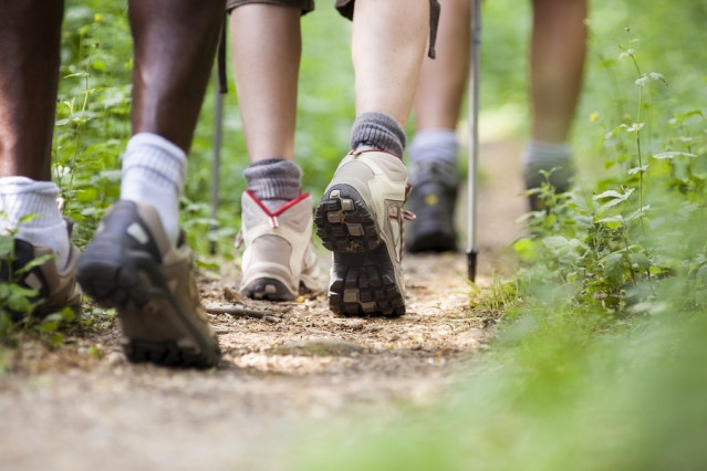 Closeup of three people's legs on a nature trail -- all are wearing hiking boots